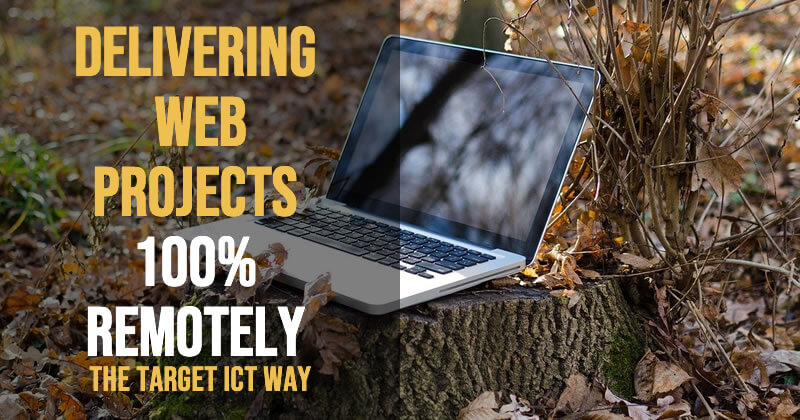 Delivering Web Projects remotely 100%